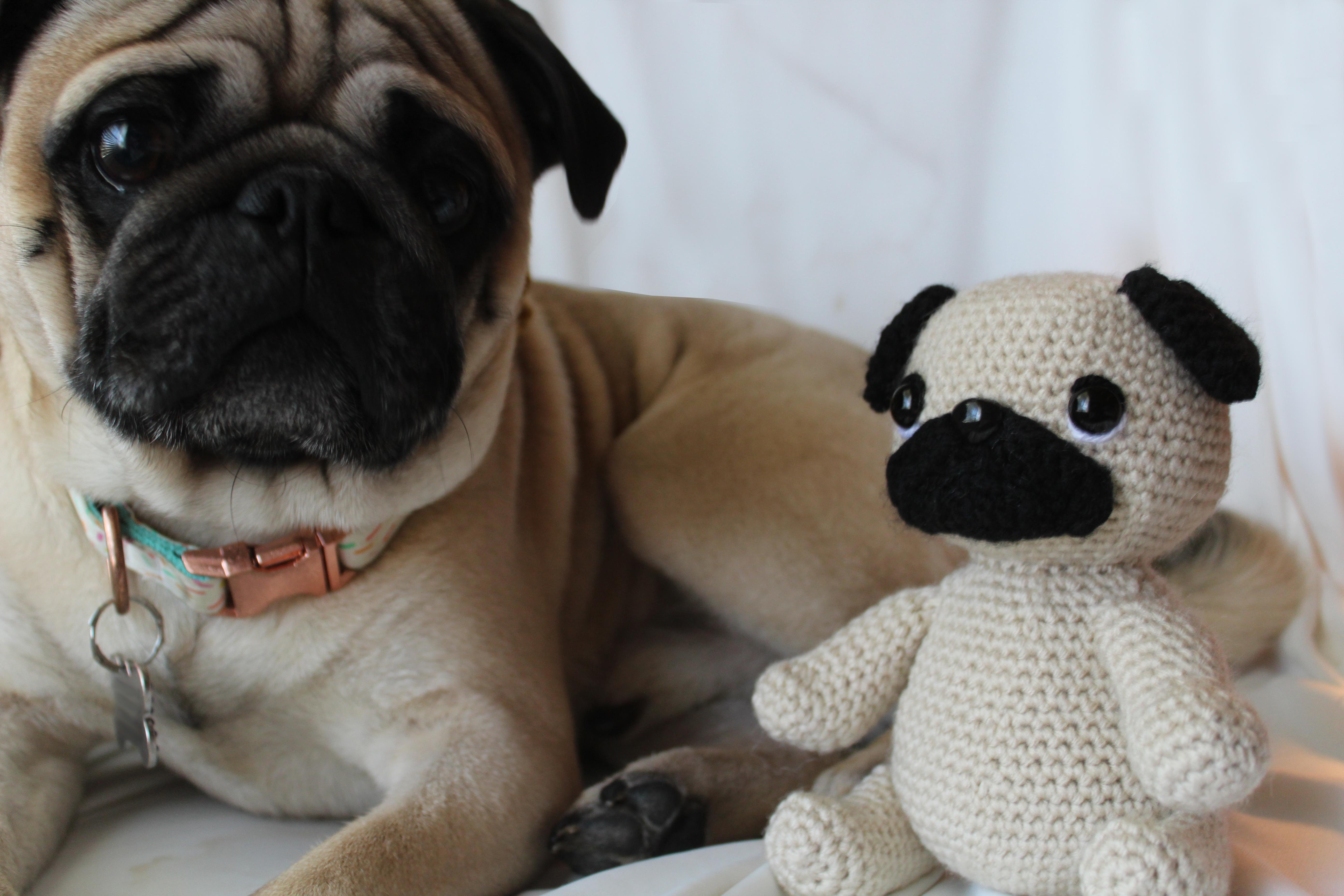 Crochet pug amigurumi by mohu   Project   Crochet / Amigurumi ...   3456x5184
